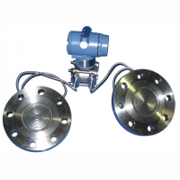 Remote flange differential pressure transmitter